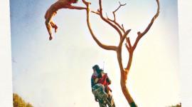 «Chemin…» – Spectacle de cirque de la Cie Courcirkoui